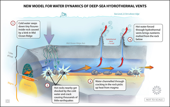 New Model for Water Dynamics of Deep-Sea Hydrothermal Vents