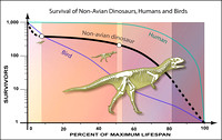 Surviving Infancy was Hard for Non-Avian Dinosaurs