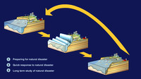 Tsunami disaster cycle interactive